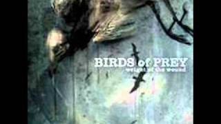 Birds Of Prey - Buttfucked with a Shotgun Barrel