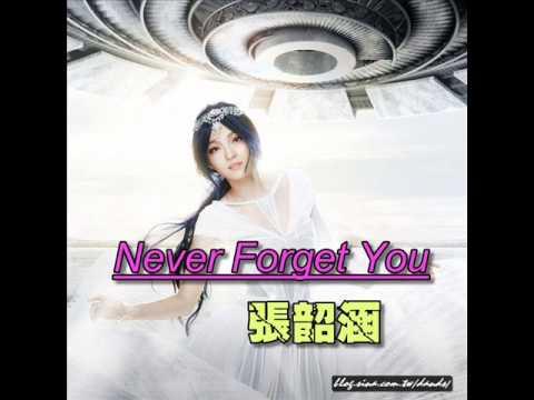 張韶涵-Never Forget You