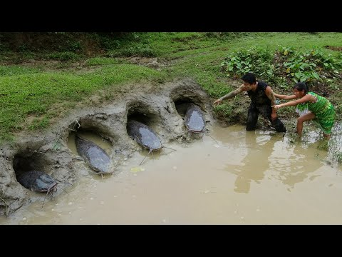 Survival skills - Primitive skills catch fish by mud pit - Cooking fish recipe - Eating delicious