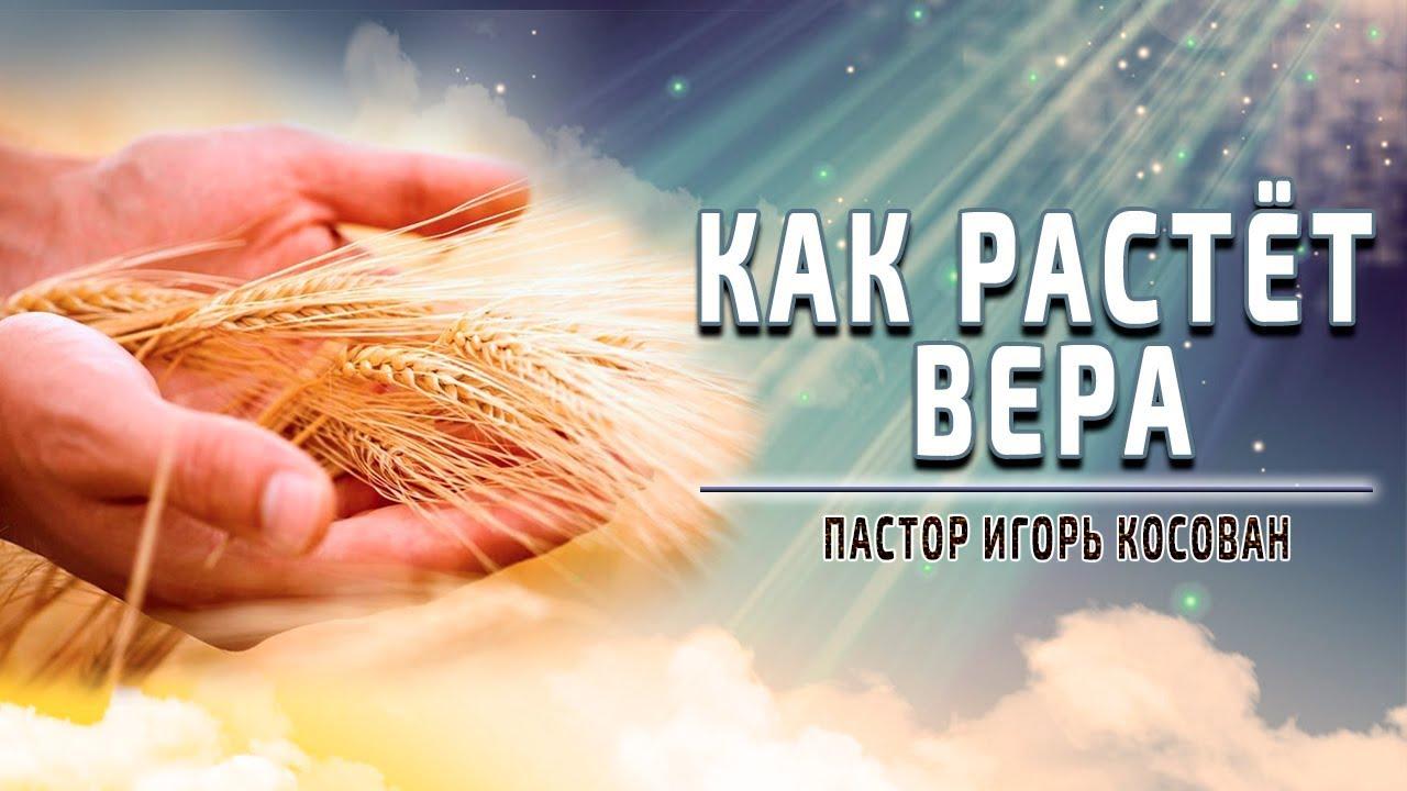 Проповедь - Как растет вера - Игорь Косован - YouTube
