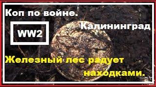 "Коп по войне.WW2/ Калининград. Лес"" Огонь"""