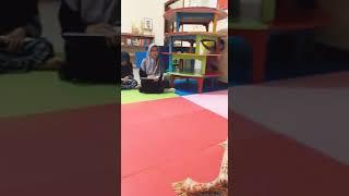 Video Nurhamnah DALWA...Kota tulung agung / guyub rukun group . WA 081297045788.. download MP3, 3GP, MP4, WEBM, AVI, FLV April 2018