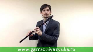 Четвертый ВИДЕО УРОК по игре на Ирландской поперечной флейте в Ре