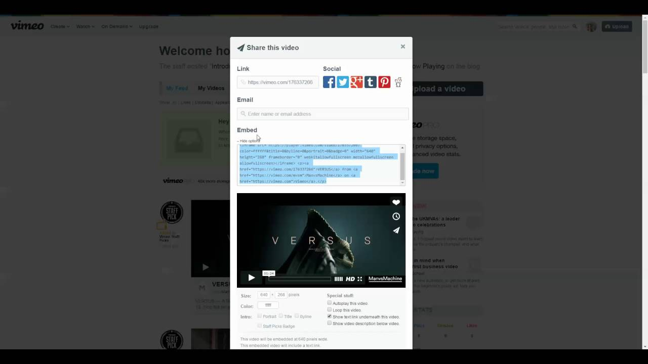 add a vimeo hosted video to a wordpress page or post