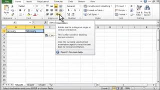 Excel 2010: How To Angle Text Labels - Tutorial Tips and Tricks