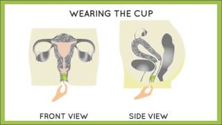 how to insert a menstrual cup   hygiene and you