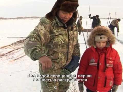 Заездок на налима. Выпуск 66. Эфир от 31.01.11