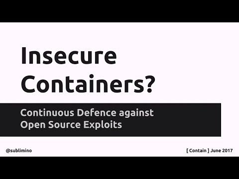 Insecure Containers? Continuous Defense Against Open Source Exploits