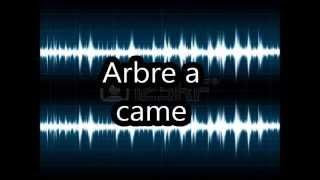 Arbre a came