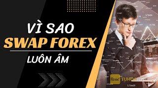 Công thức tính Swap Forex Giải thích vì sao tổng swap forex luôn âm
