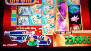 $13,000 JACKPOT HAND PAY! MYSTICAL DRAGONS WMS 20 FREE SPIN BO…