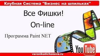Как сделать картинку в программе  Paint.NET?
