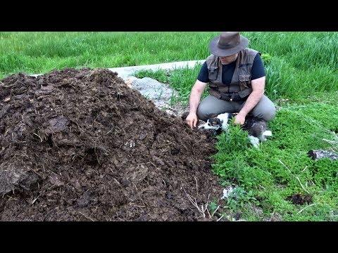Organic Gardening 5: Making Dirt