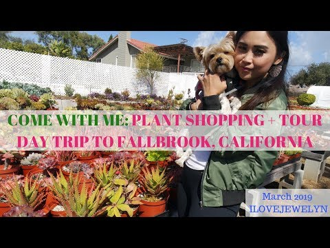 Come with me: Plant shopping + tour | Fallbrook, CA  | March 2019 | ILOVEJEWELYN
