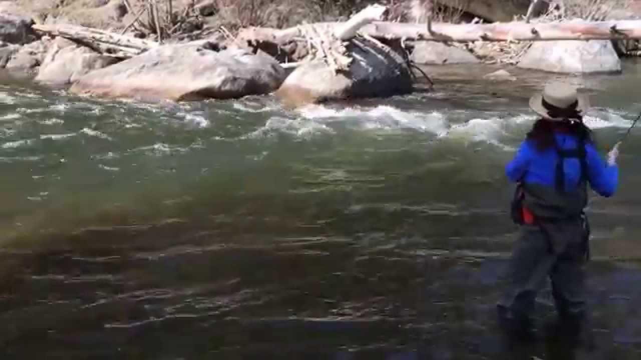 Charene the adventure queen fishing rock creek montana for Rock creek fishing report