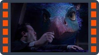 Окками, фишка с чайником — Фантастические твари и где они обитают (2016) сцена 5/7