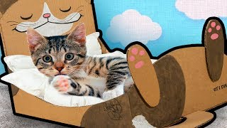 DIY Cat Bed from Cardboard 🐱| Craft Ideas for Cats & Kittens