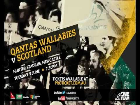 Qantas Wallabies v Scotland, Newcastle 2012