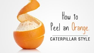 How To Peel An Orange | Easy Way To Peel Mandarin Oranges In A Caterpillar Style