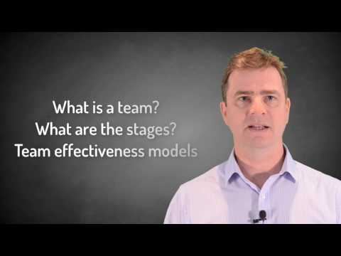 Team Effectiveness - What Is A Team?