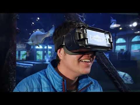 NEW: Underwater Treasure Virtual Exhibit