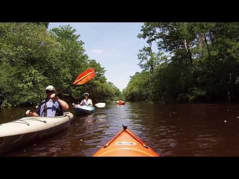 Lynches River Paddle Scranton S.C