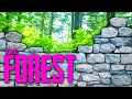 SUPER FORT (The Forest, Ep.15)