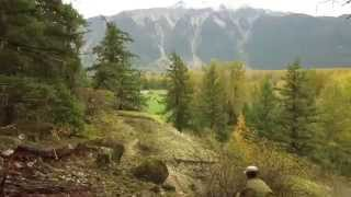 All-Time Fall-Time Pemberton Mountain Biking