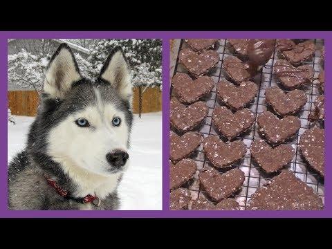 DIY DOG TREATS CAROB VALENTINE'S DOG COOKIES |  Snacks With The Snow Dogs 2
