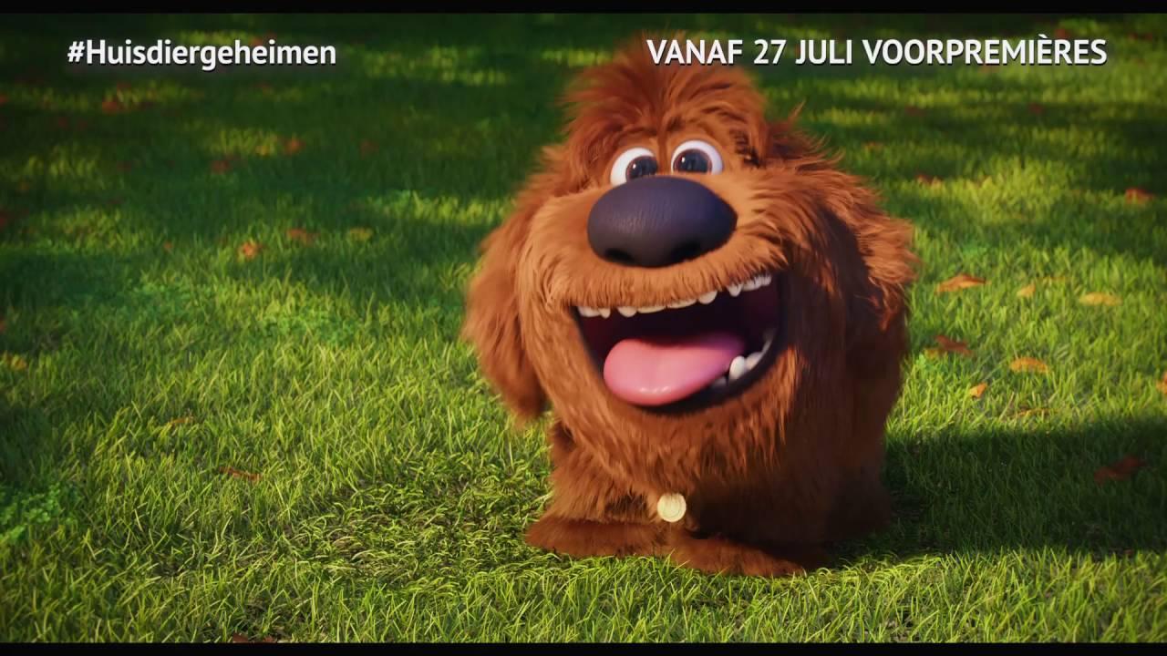 huisdiergeheimen vanaf 27 juli in de bioscoop   youtube