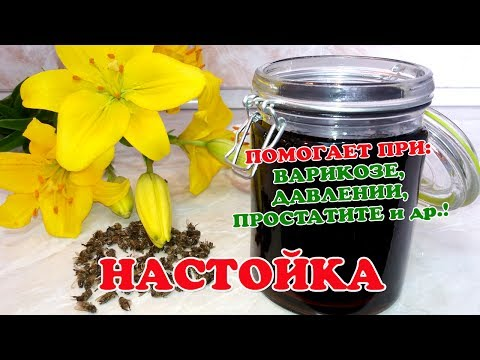 Компания Адонис: анти-к, тукофитомол, антикан, гемопрост