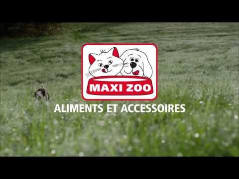Vidéo Billboards MAXI ZOO sur M6