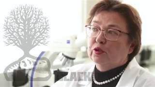 Гуминовые кислоты против вирусов и микробов