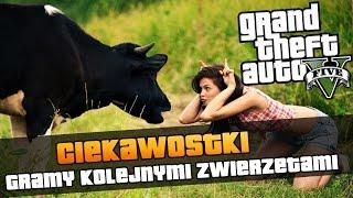 GTA V | Gramy kotem, psem, krową, jelonkiem i kojotem | Ciekawostki z GTA V [#101]
