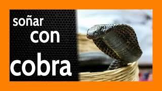 Soñar con Cobra 🐍 ¿TE PICÓ? ☝️ Mira lo que pasó ☝️