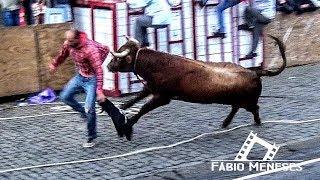 Baixar Tourada na FETEIRA dos Amigos da Ganadaria de Francisco Pereira FP - 06 de Outubro de 2018