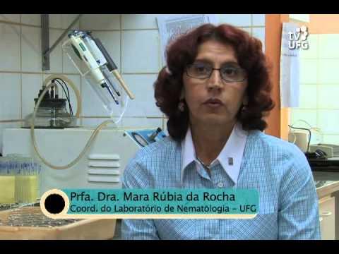 Image result for mara rubia da rocha ufg