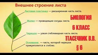Биология 6 класс § 6 (Автор: Пасечник В.В. ) Внешнее строение листа