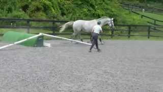 Getty 2014 lunging over jumps