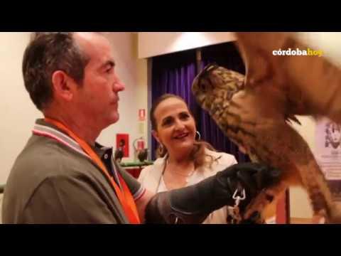 Cuatro días para conocer lo mejor de la caza en Córdoba