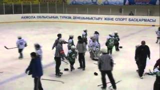 Best kids under 10 mass hockey fight