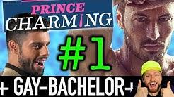 Prince Charming Folge 1: Der Gay-Bachelor ist da! Alle Kandidaten