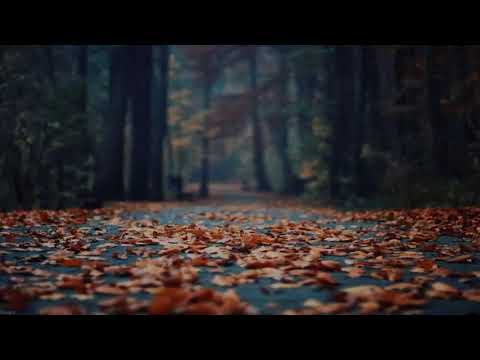 The Chainsmokers - Honest (Maliboux UNKWN Remix)