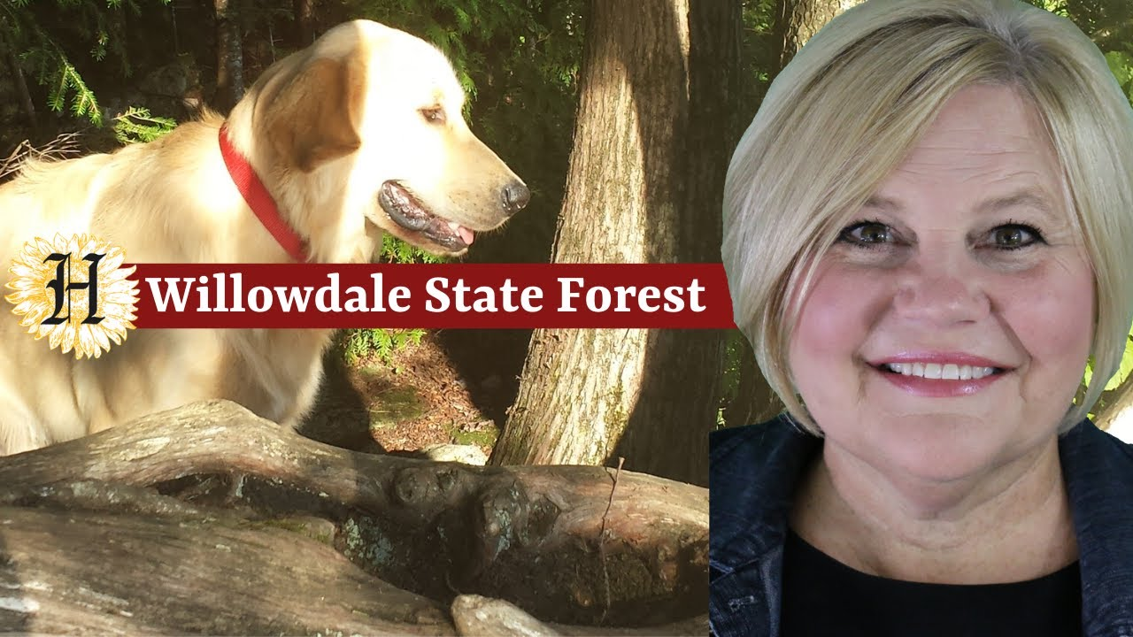Willowdale State Forest | Hiking and Biking