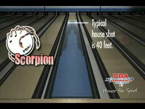 Pba Scorpion Oil Pattern Youtube