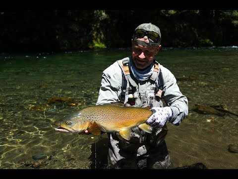 The search for 'dry fly heaven' - Fly fishing New Zealand.