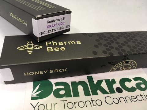 Pharma Bee - Honey Stick Review