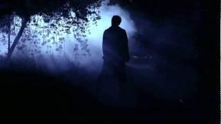 Dan Balan (Crazy Loop) - Justify Sex (DVDRip)