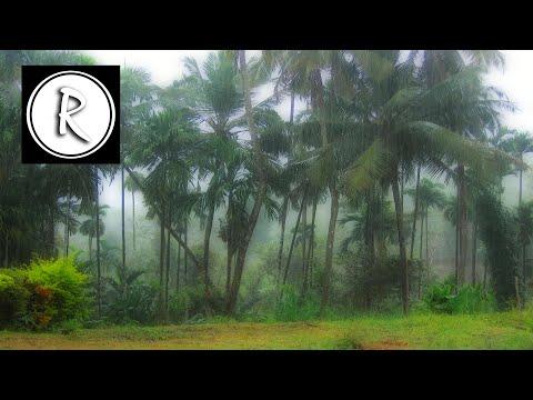 "Relaxing ""RAIN SOUND"" - 3 HOURS ! Deep Sleep Relaxation Meditation Spa Yoga Reiki"