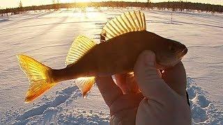 Рыбалка на Крещение \ Январь 2020